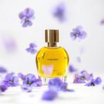 Hiram Green s Vivacious: Vivid Violets and Pansies